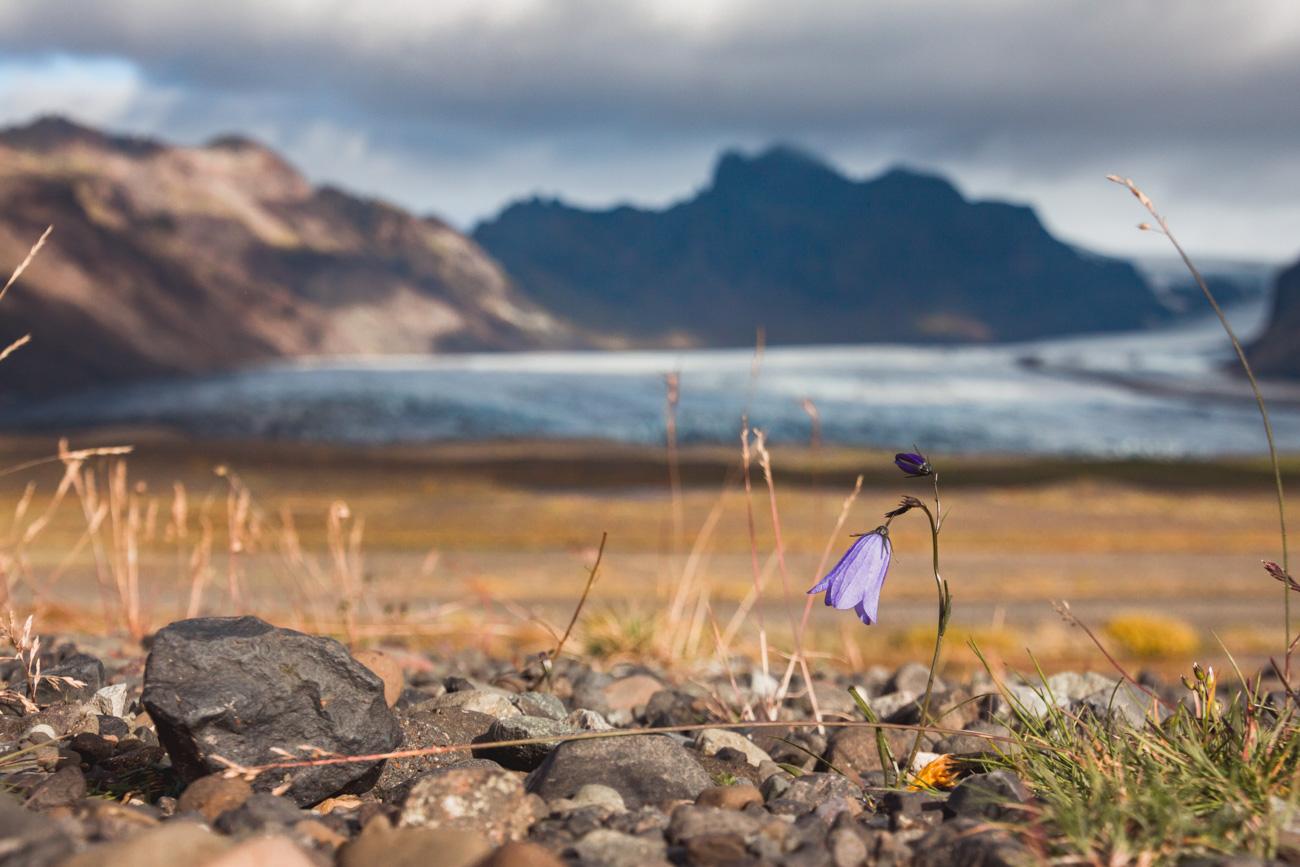 Skaftafell Islandia