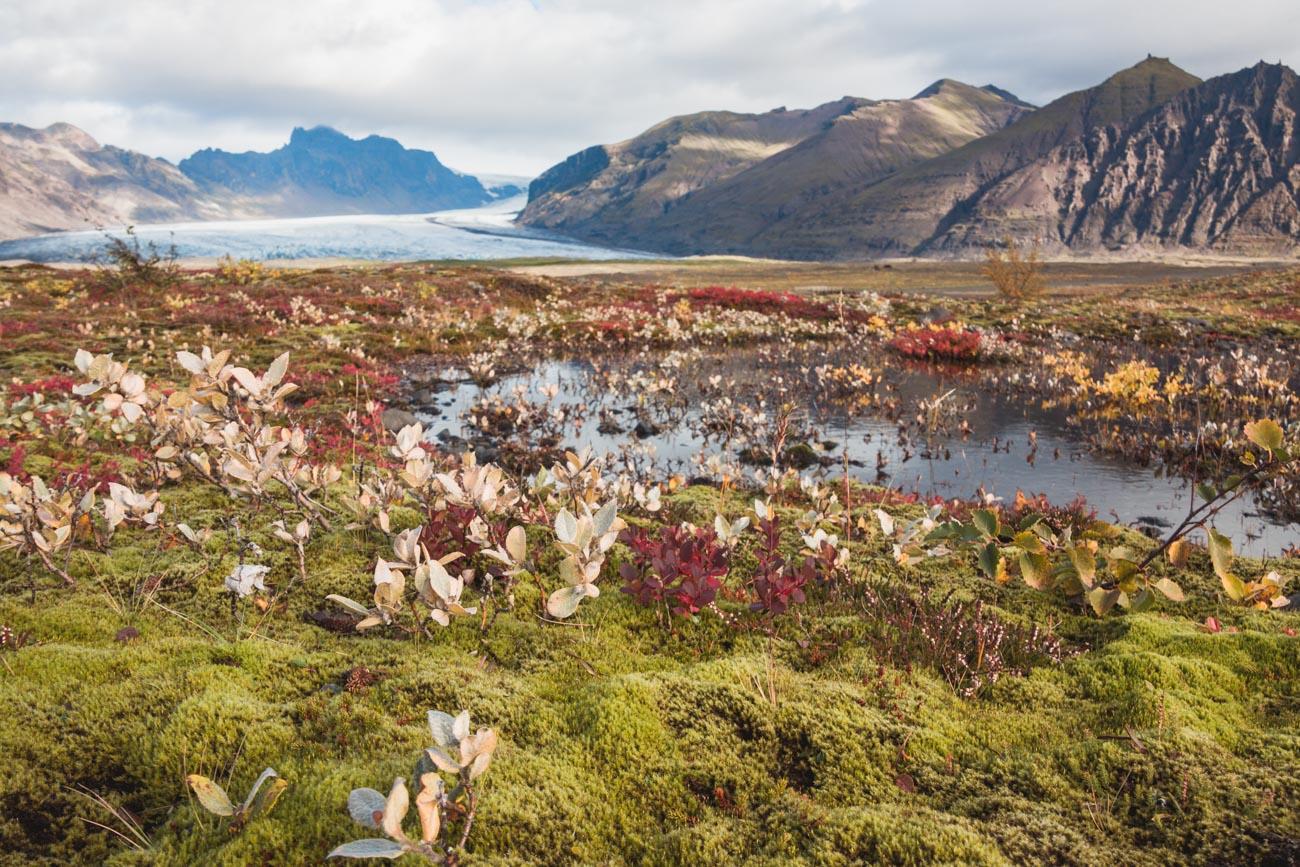 Skaftafell atrakcje Islandii