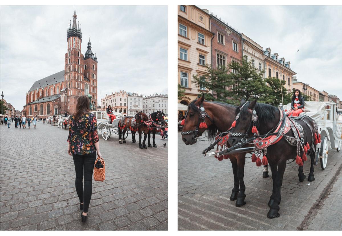 Kraków Stary Rynek