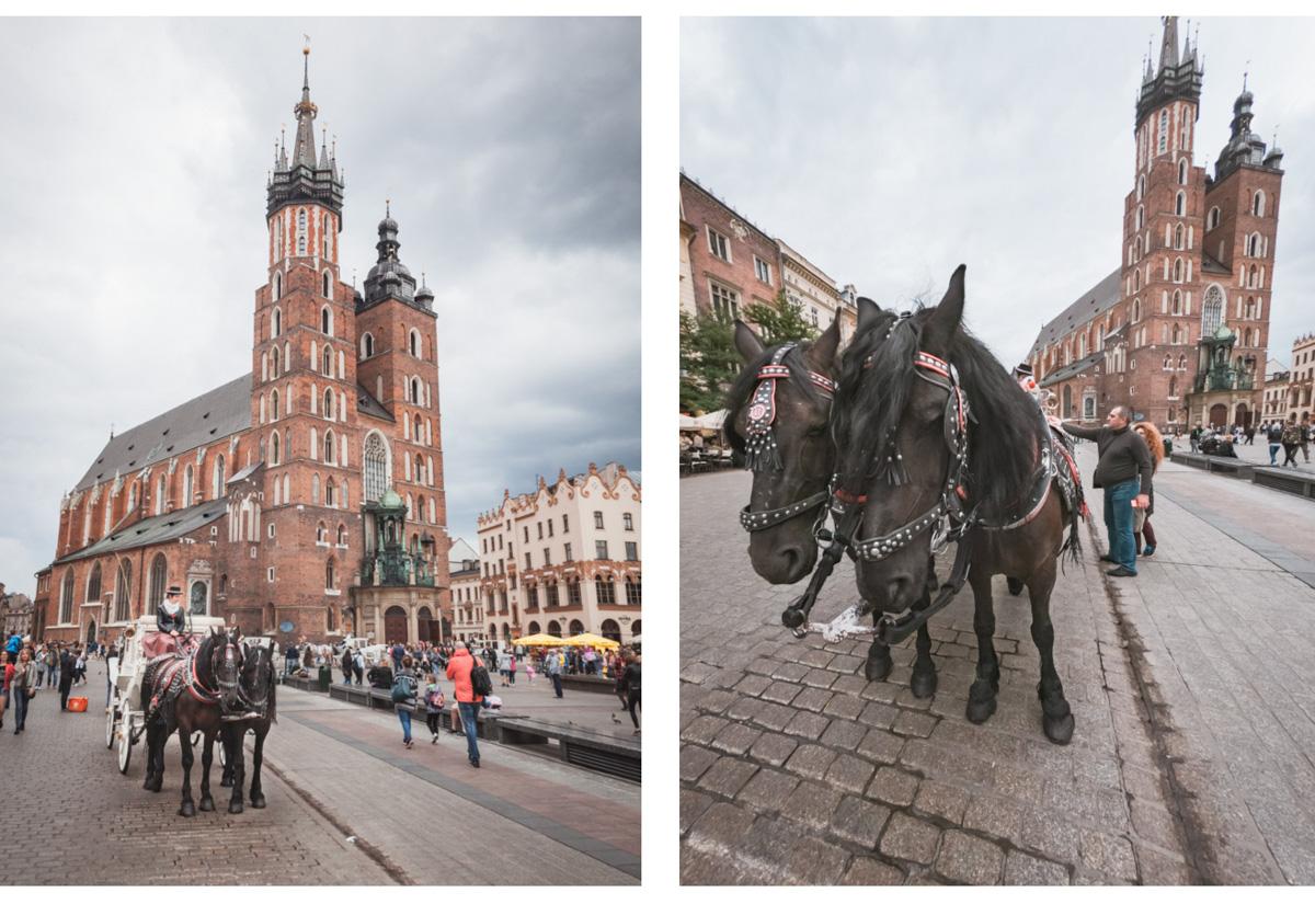 Kraków dorożki