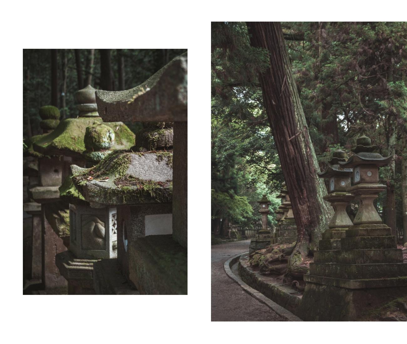 Japonia, świątynia w Narze