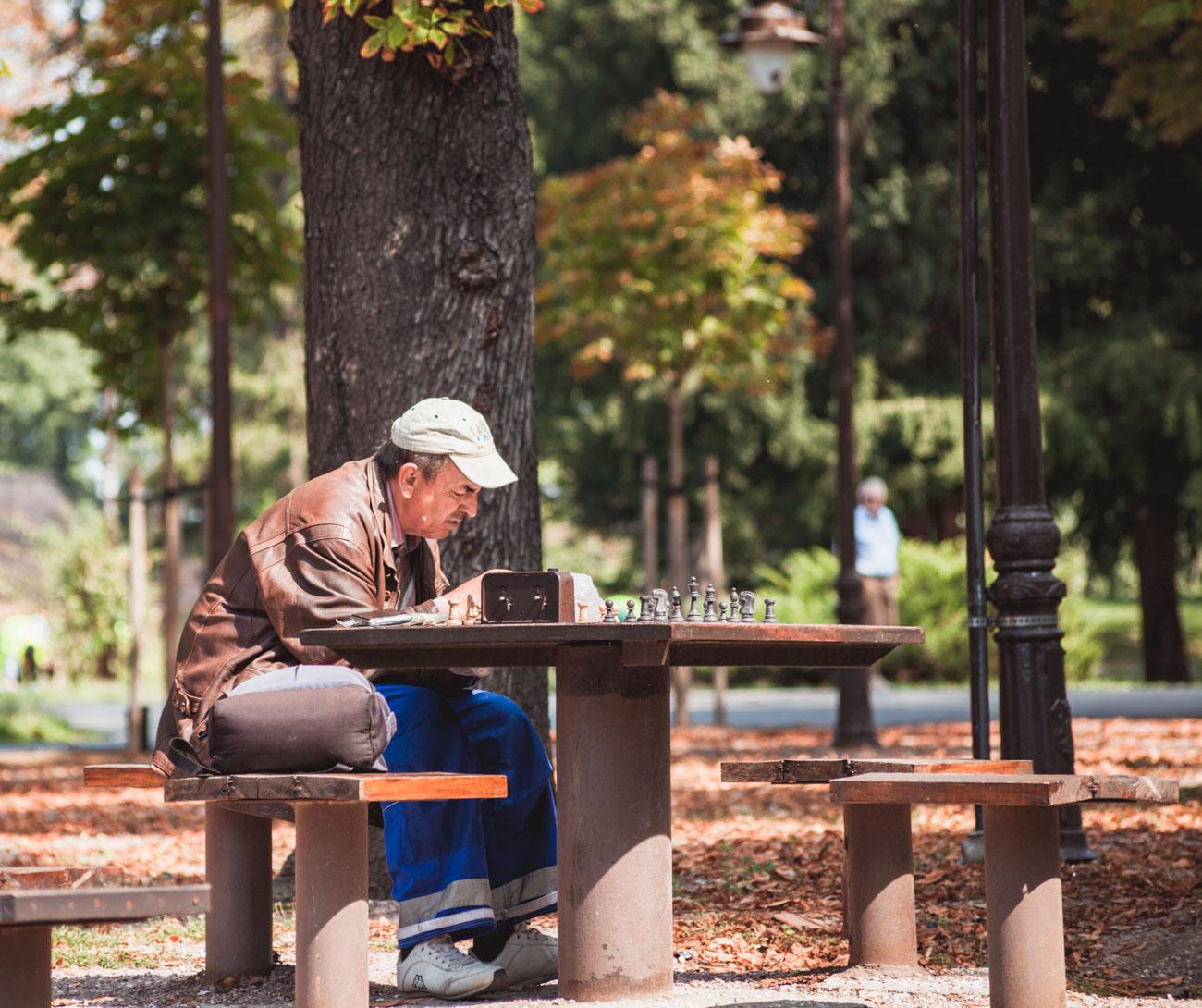 Belgrad Kalemegdan szachista w parku