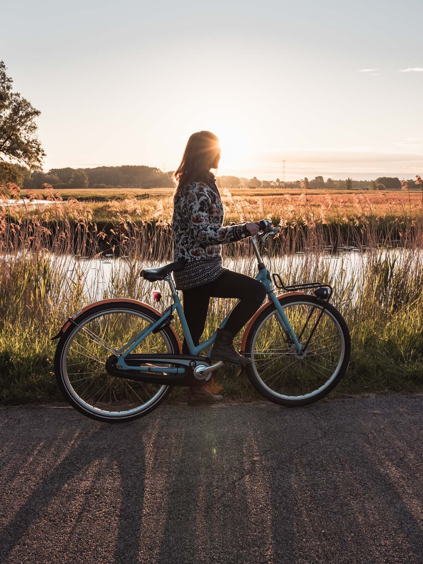 biesbosch rowery holandia