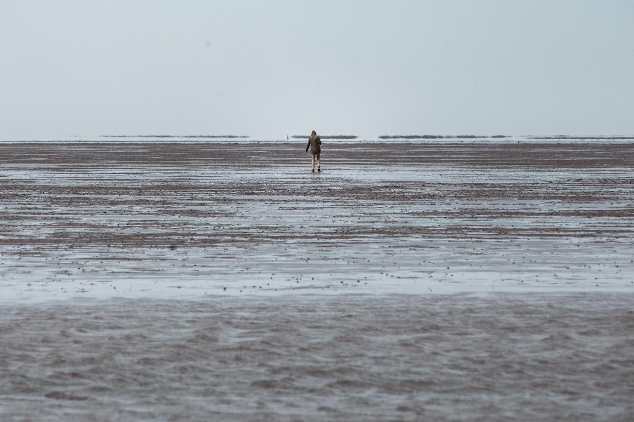 holandia wadden sea