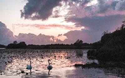 LOARA ATLANTYCKA: JEZIORO LAC DE GRAND LIEU OBOK NANTES