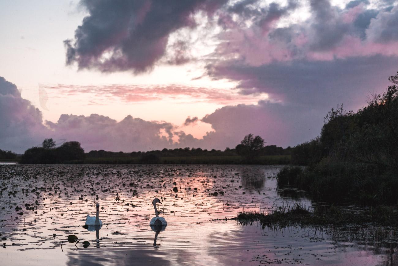 jezioro lac de grand lieu loire atlantique