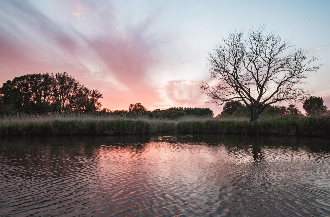 park narodowy biesbosch
