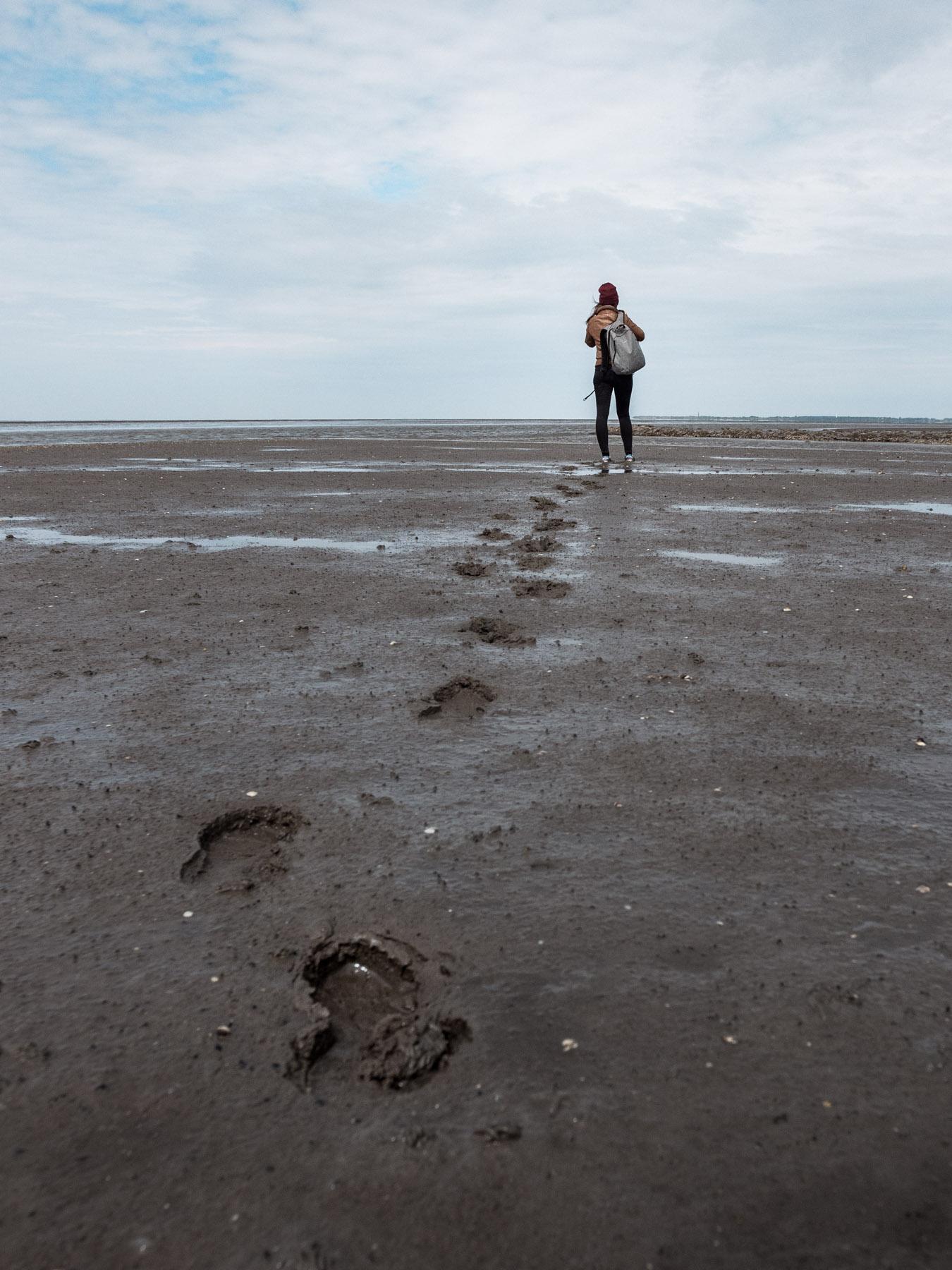 spacer po dnie morza holandia