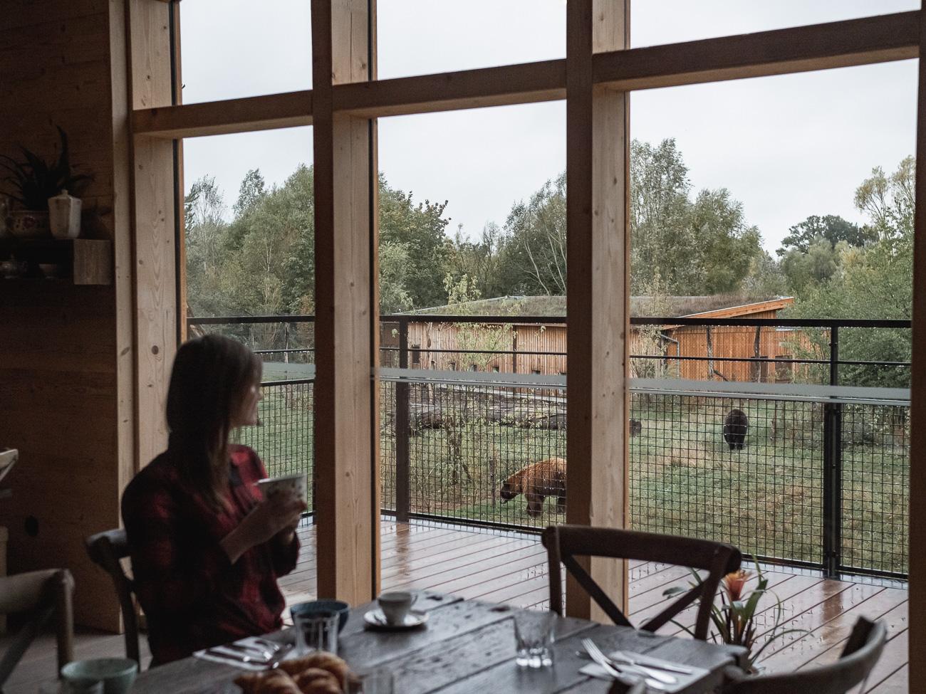 lotaryngia parc animalier sainte-croix