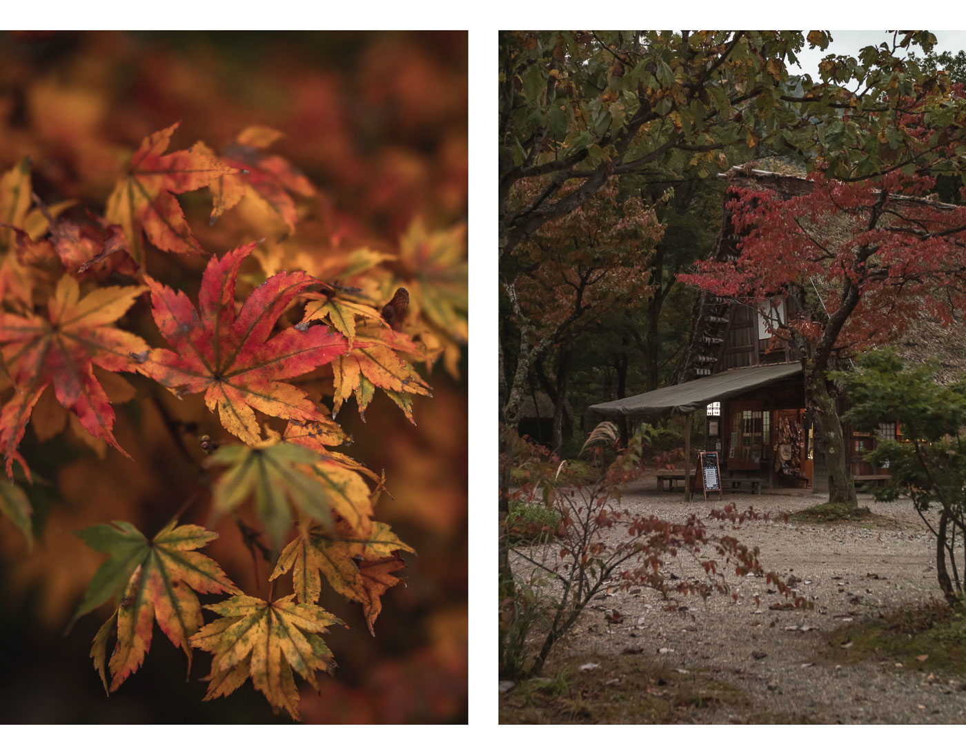 japonia shirakawa-go atrakcje