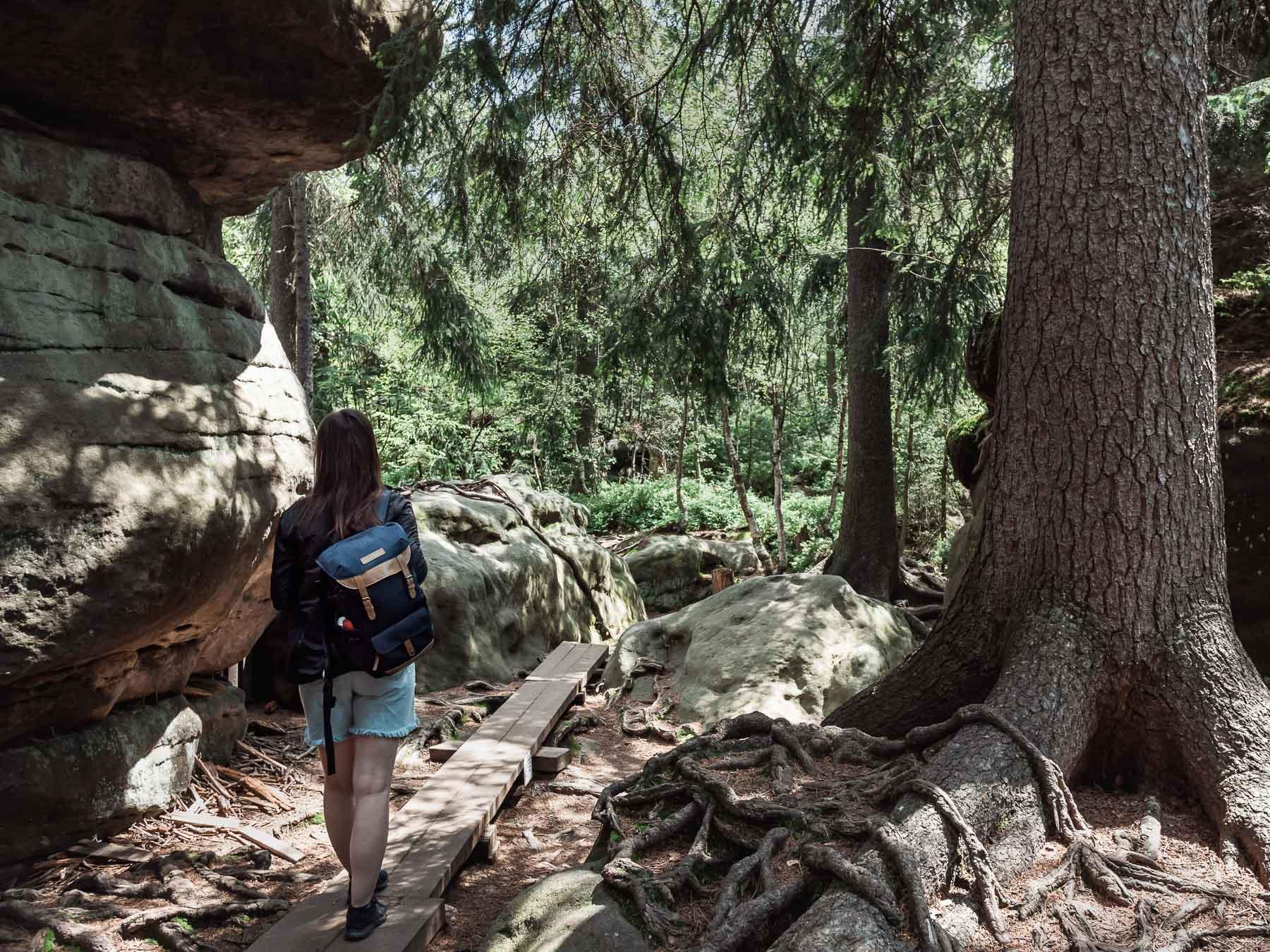 góry stołowe błędne skały